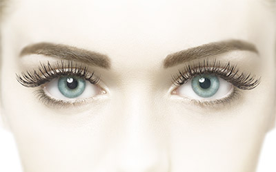 Lash Perfect Stylist