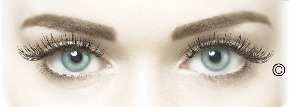 lash-perfect-the-treatment